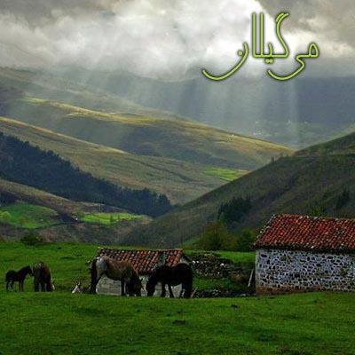 آلبوم می گیلان فریدون پور رضا موسیقی گیلکی